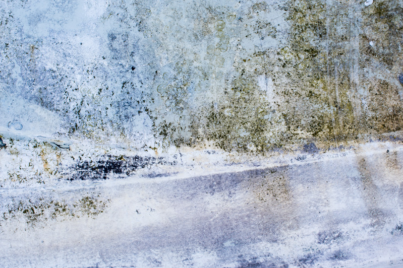 scratching the surface   by bertram rusch